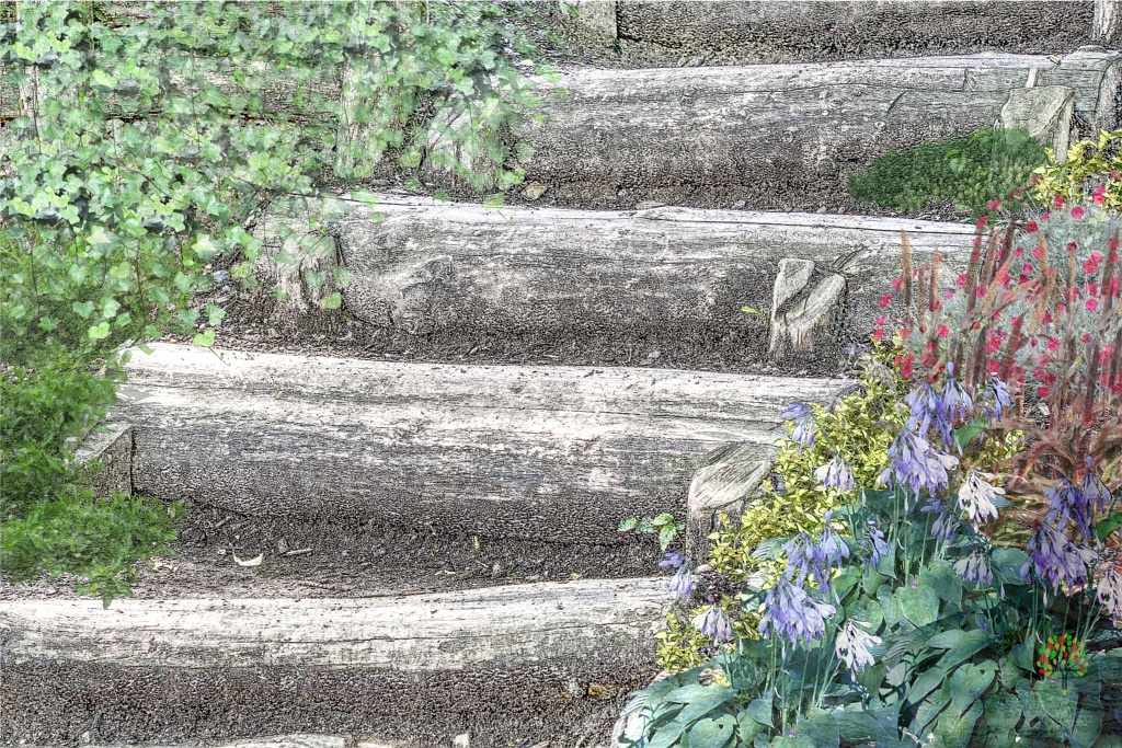 ogrod przy shodach nie musi byc symetryczny