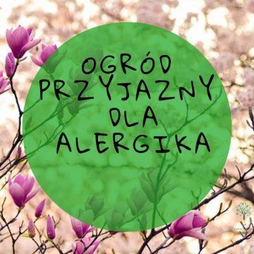 Jak urządzić ogród dla alergika?