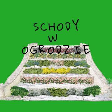 Jak zagospodarować ogród przy schodach?