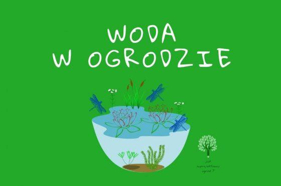 11 pomysłów na wodę w ogrodzie